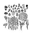 hand drawn brush spring vector image