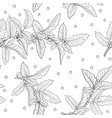 black and white seamless pattern holly ilex vector image vector image