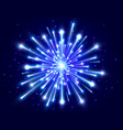 bright firework color neon firework in the night vector image