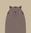 cute big fat cat vector image vector image
