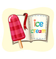 Icecream on stick and a book vector image vector image