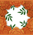 marigold frame with leaves floral background vector image