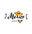 mexico typography design template tourism website vector image vector image