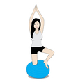 women on balance ball vector image