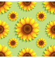 Background seamless pattern with sunflowers vector image vector image