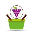 green basket fresh grape design icon vector image