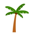 Palm isolated vector image vector image