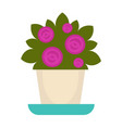 purple flowers in pot vector image vector image
