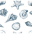 seamless pattern of seashells sketches vector image