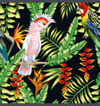 tropical parrot liana flowers leaves pattern vector image vector image