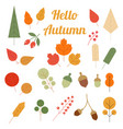 autumn leaves in a flat style isolated on white vector image