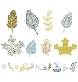 collection leaves vector image vector image