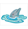 dolphin looking out water vector image vector image