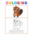 funny beaver coloring book with example preschool vector image