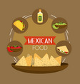 mexican tacos food with tequila and avocado vector image