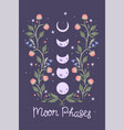 moon phases and flowers on a purple background vector image