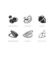 nuts and seeds icons set macadamia cashew acorn vector image