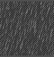 seamless rainfall texture rain drop isolated on vector image vector image