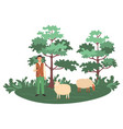 sheep farming man shepherd with herd on nature vector image
