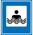 Swim Icon Flat simple pictogram on light vector image