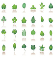tree leafs and nature icons vector image vector image
