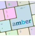 amber Button on Modern Computer Keyboard key vector image