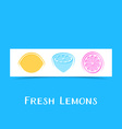 Banner with three abstract lemons vector image vector image
