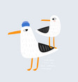 cute couple of seagulls hand vector image