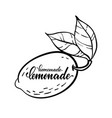 monochrome lemon logo with lettering vector image vector image