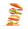 sandwich ingredients composition vector image
