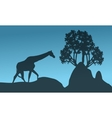 Silhouette of giraffe and rock vector image