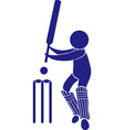 Sport icon design for cricket vector image vector image