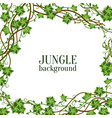 tropical jungle lianas vine branches and leaves vector image