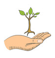 hand with a young tree symbol vector image
