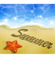 Beautiful beach top view vector image vector image