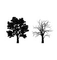 black silhouette tree forest plant vector image