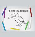 children toucan coloring worksheet vector image vector image