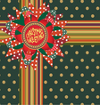 Christmas greeting gift decor vector image vector image