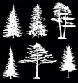 coniferous trees silhouettes collection vector image vector image