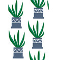 exotic seamless pattern tropical houseplant in a vector image