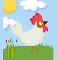 rooster bird grass sun farm animal cartoon vector image vector image