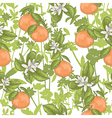 Seamless summer citrus floral pattern vector image vector image