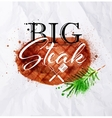 Steak watercolor vector image vector image