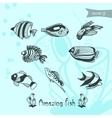 amazing fish vector image