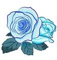 blu rose vector image vector image