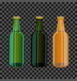 colored glass bottles vector image vector image