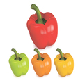 Colored peppers vector image vector image