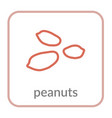 peanut seed icon brown groundnut outline flat vector image