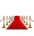 red carpet with golden metal barriers and rope vector image