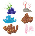 underwater flora and fauna underwater flora and vector image